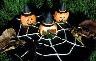 Le Farine Magiche portano Halloween in cucina con La Farina di Zucca