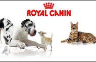 Nuove nomine per il management  di Royal Canin Italia