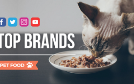 Blogmeter: le aziende più social del Pet Food