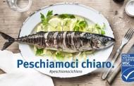 """Al via la campagna """"Peschiamoci Chiaro"""" di MSC Pesca Sostenibile e Carrefour Italia"""