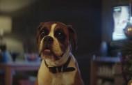 Il nuovo spot natalizio di John Lewis spopola sul web