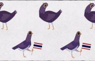 Il piccione viola di Facebook