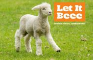 """""""Let it Beee"""": la LAV e l'invito a cambiare menù per Pasqua"""