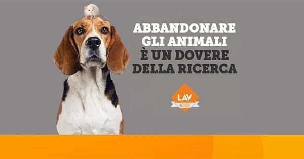 LAV e Cookies Comunicazione invitano ad abbandonare gli animali