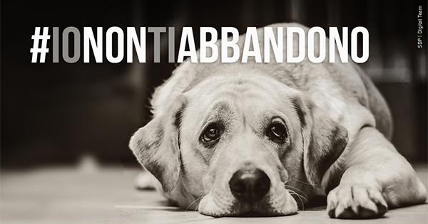 #IONONTIABBANDONO: via alla campagna di sensibilizzazione contro l'abbandono degli animali