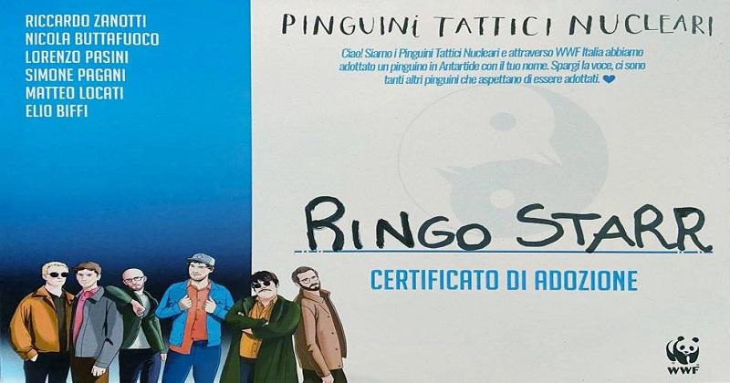 Pinguini Tattici Nucleari e WWF: adottati 100 pinguini imperatore