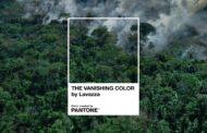 """""""The Vanishing Color"""": Lavazza insieme a Pantone Color Institute contro la deforestazione"""