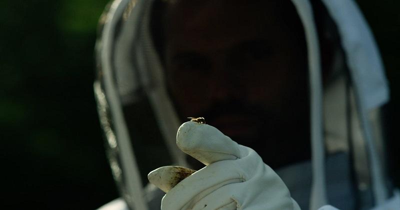 World Bee Day 2021: 3Bee per le api non lascia indietro nessuno