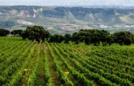 Undiscovered Italy Tours alla scoperta delle meraviglie del territorio di Catanzaro